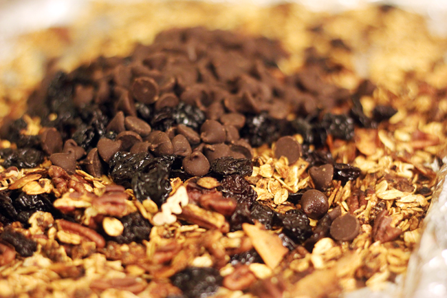 dark chocolate cherry granola 2