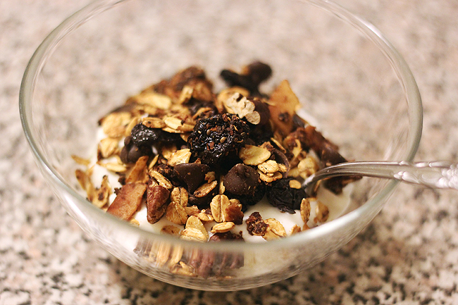 dark chocolate cherry granola 5